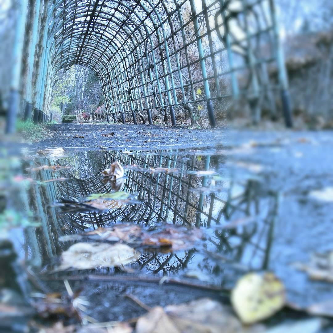 豊平公園のトンネルアーチ
