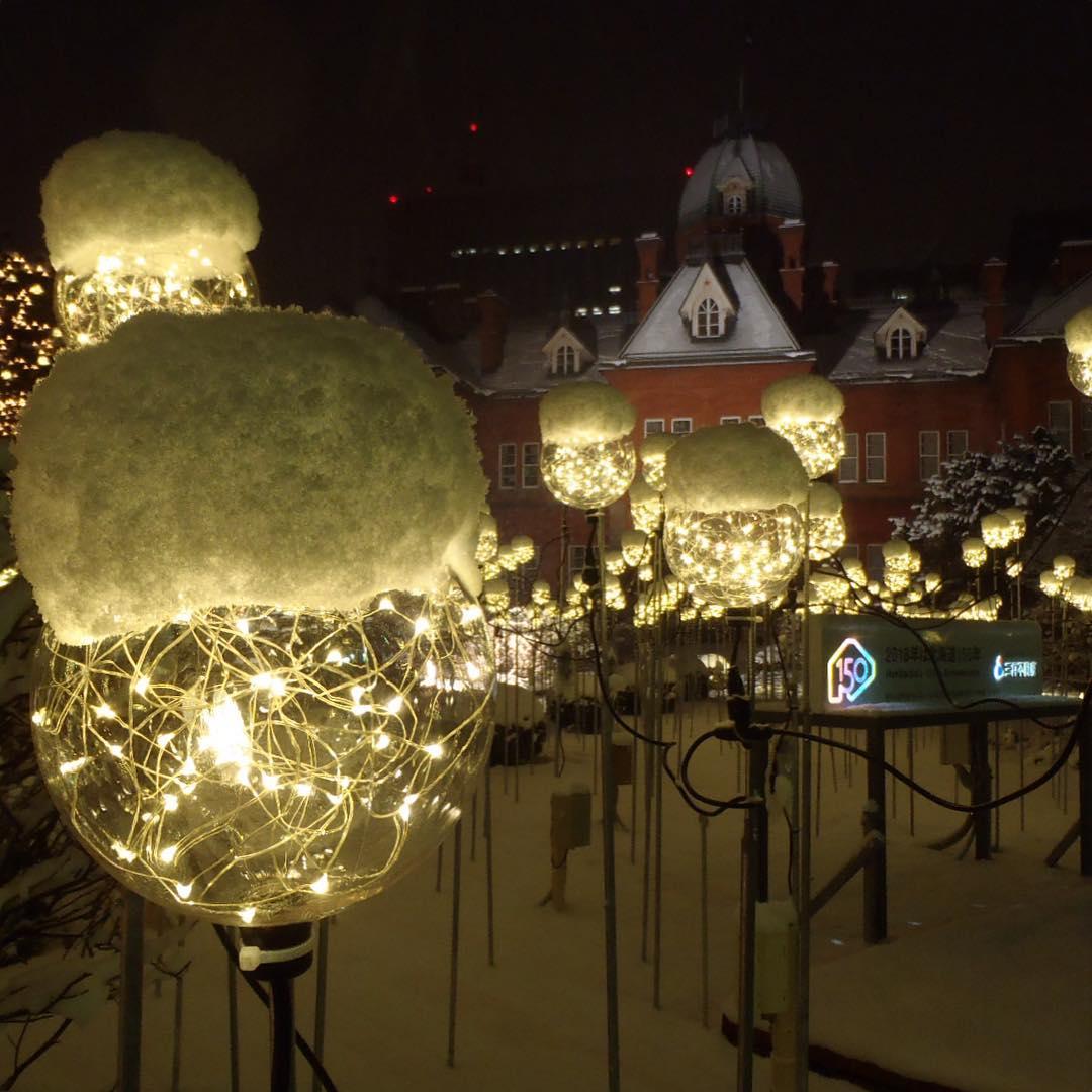 北海道庁と雪帽子