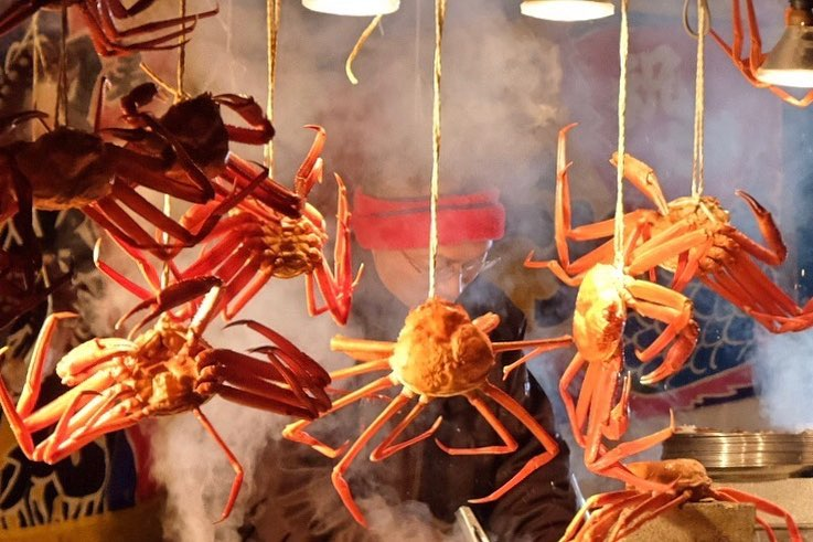 小樽で見たブラ下がる蟹
