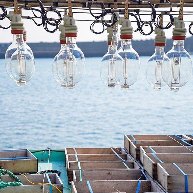函館市のイカ釣り漁船の集魚灯