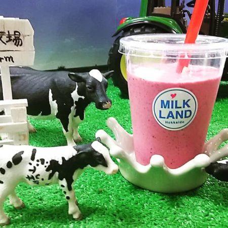 Delicious Hokkaido milk