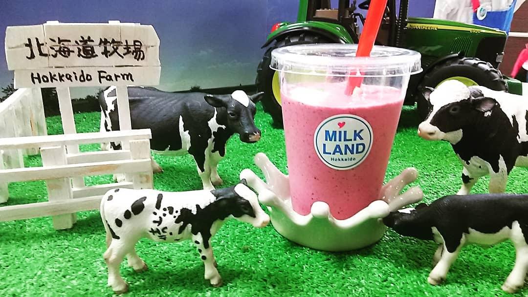 美味しい北海道の牛乳