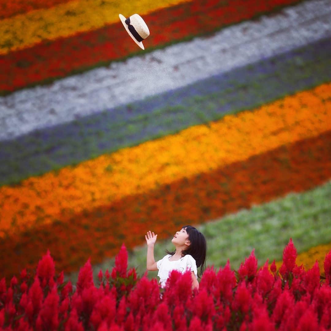 美瑛町四季彩の丘で遊ぶ女の子
