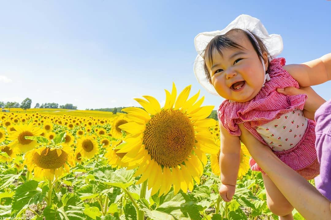 ひまわりと笑顔の赤ちゃん