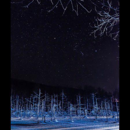 冬の白金青い池