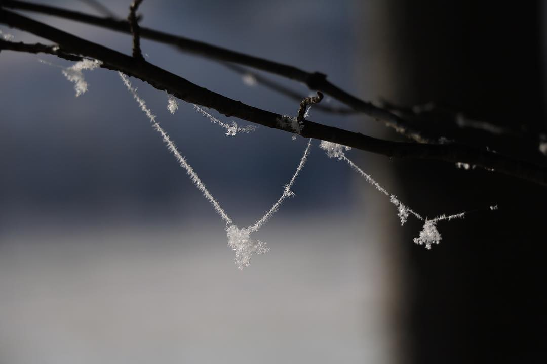 Spiderweb and hoarfrost necklace