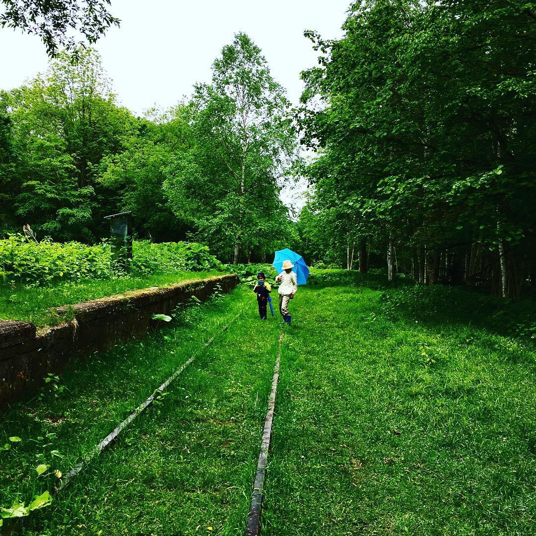幌加駅の廃線路
