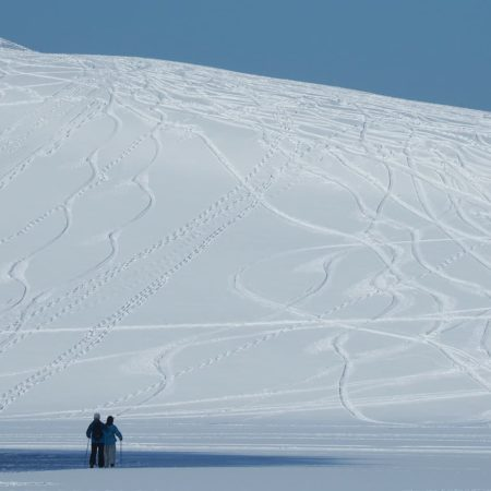 Ski‐trails and footprints in Mt. Moere