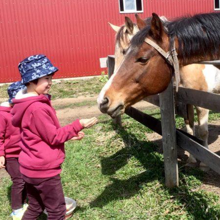 馬と子ども