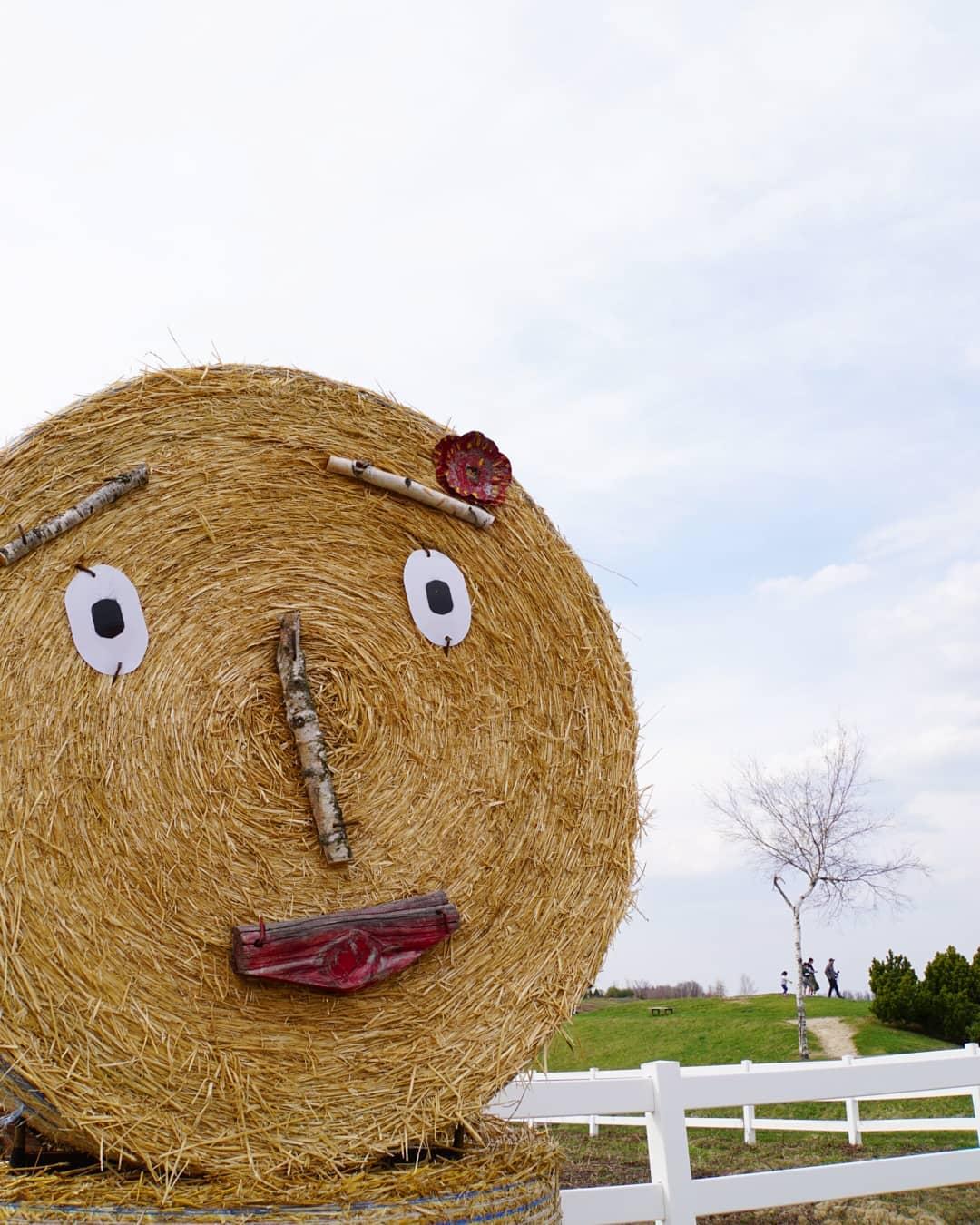 美瑛町の牧草ロール人形