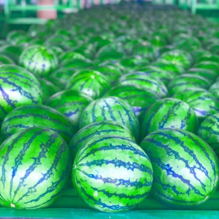 Delicious looking watermelon made in Kyowa