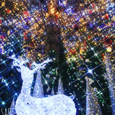 Fantastic illuminations in Sapporo