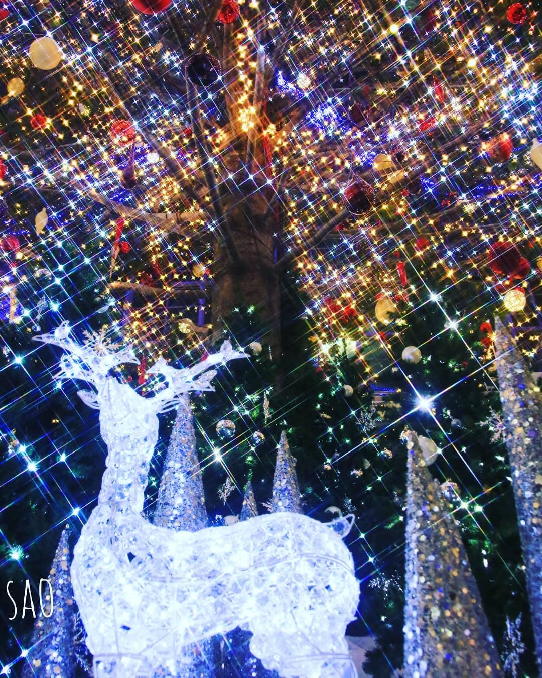 Fantastic illuminations in Sapporo