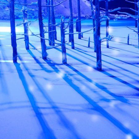 Mystical Aoiike of winter