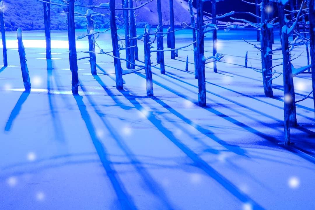 冬の幻想的な青い池