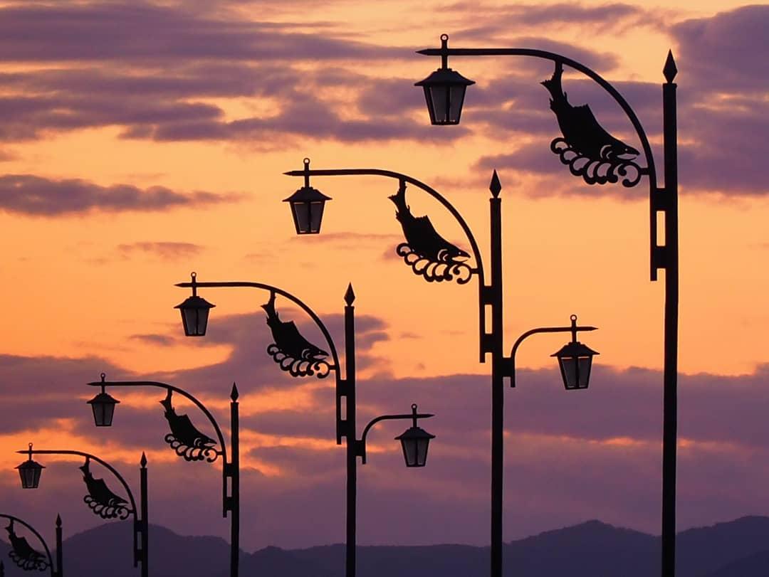 標津町のサケ街灯