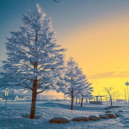 小樽市の幻想的な雪景色