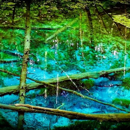 清里町にある神の子池