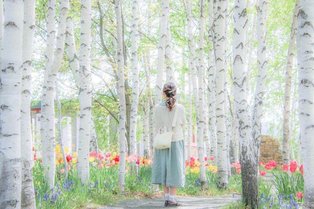旭川市にある上野ファームの可愛らしい風景