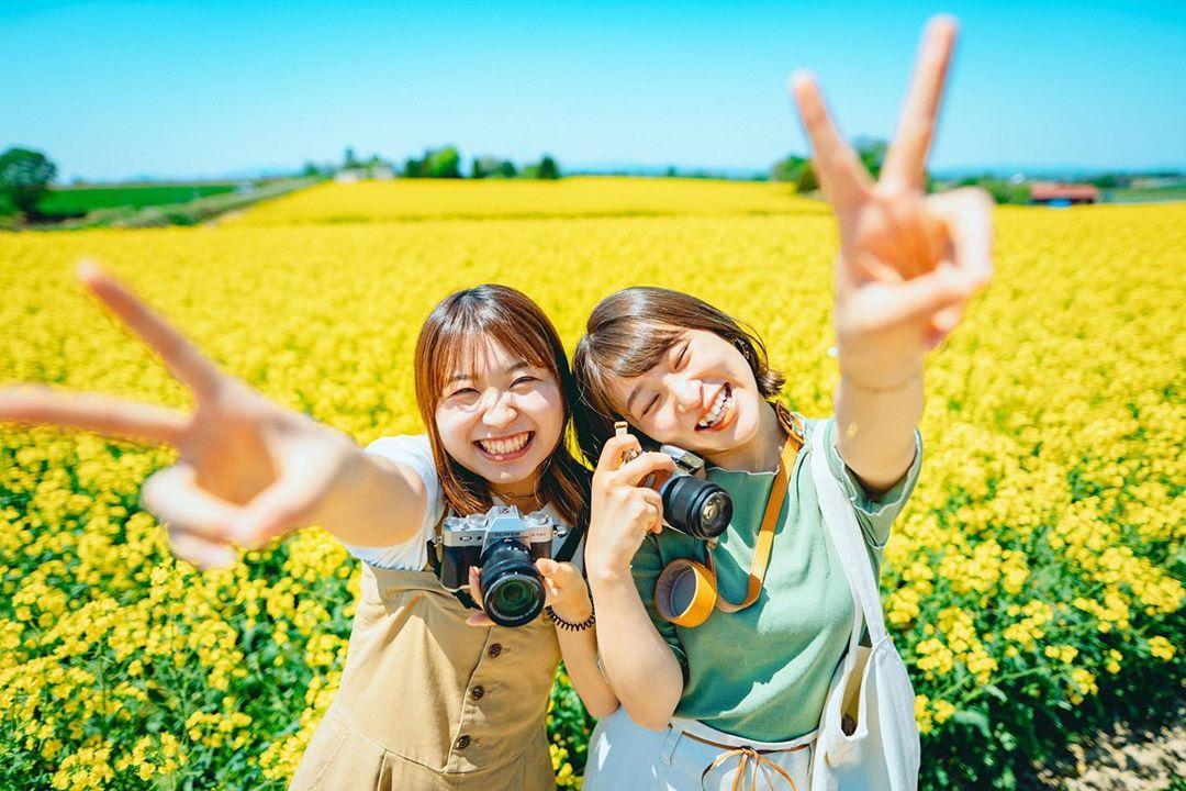 滝川市の菜の花畑