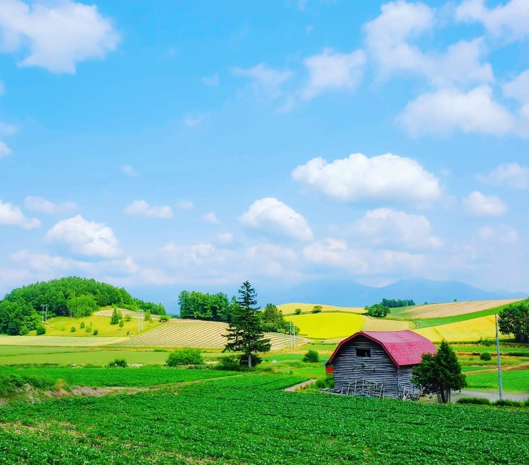上富良野町の素敵な景色