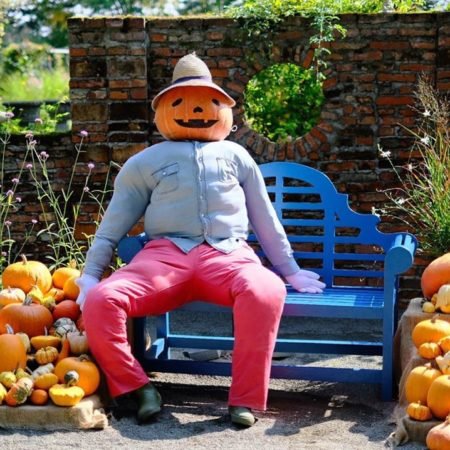 Pumpkin human of Ueno Farm in Asahikawa