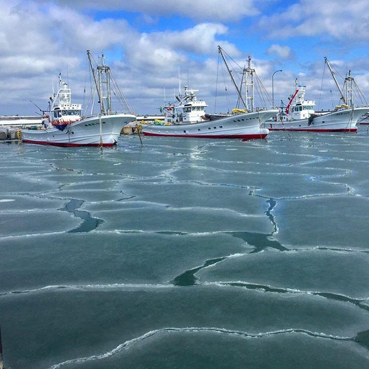 猿払村の漁港