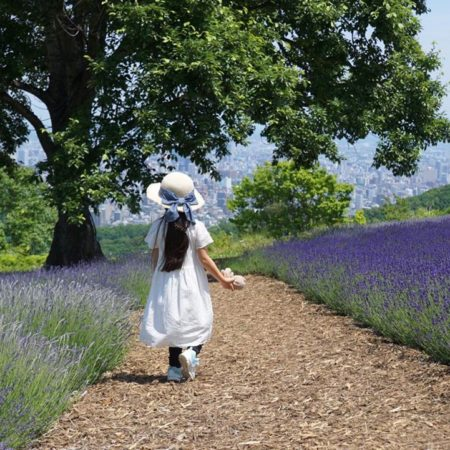 Lavender and girl on Horomori Pass