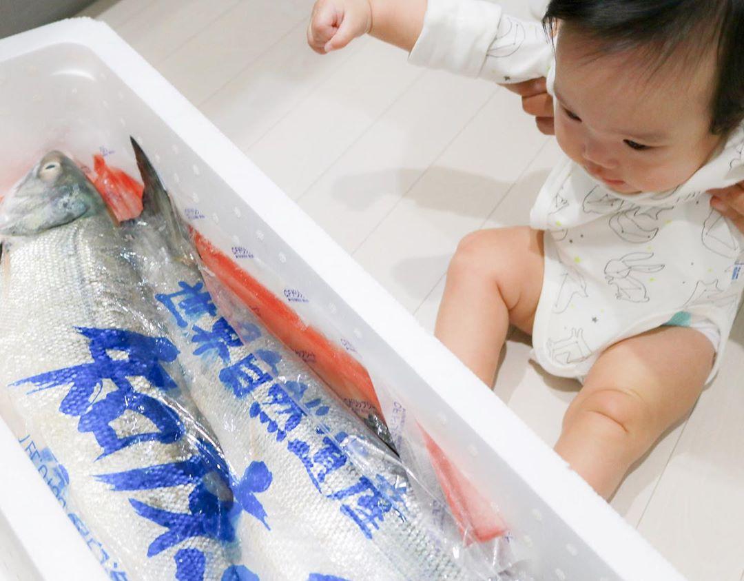 Baby and Rausu salmon