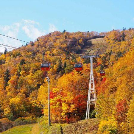 Autumn leaves gondola in Sapporo