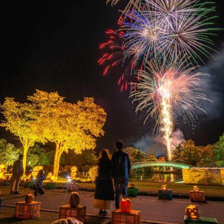七飯町にある大沼国定公園の花火
