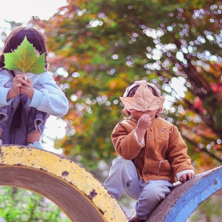 Children who hide their faces with leaves in Sapporo