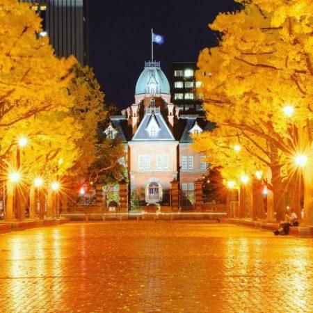 札幌市の北海道庁旧本庁舎とイチョウ並木
