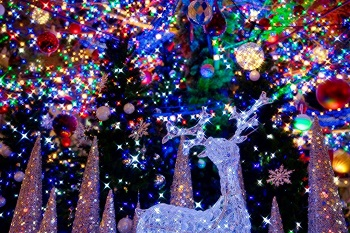 Colorful illuminations in Sapporo