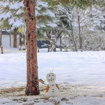 Snowman in Sapporo