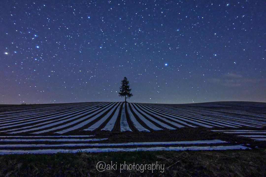 Beautiful starry sky and