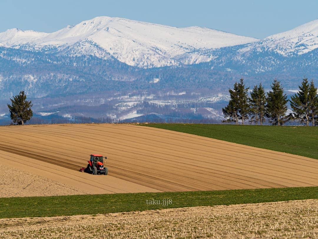 Field and Tokachi-dake mountain range (Biei)