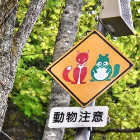 Humorous animal caution sign (Ishikari)